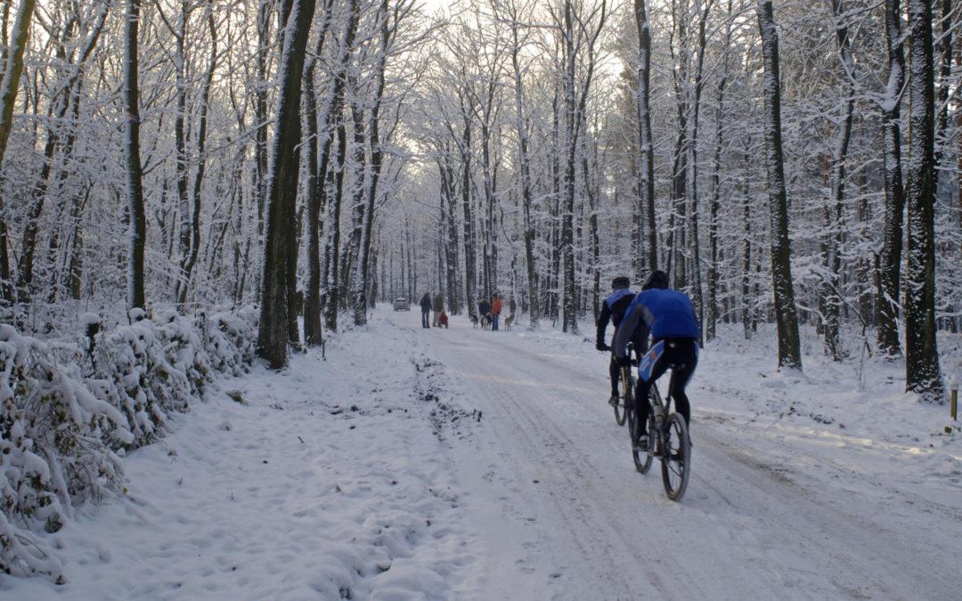 Radfahren im Winter – Tipps für die kalte Jahreszeit