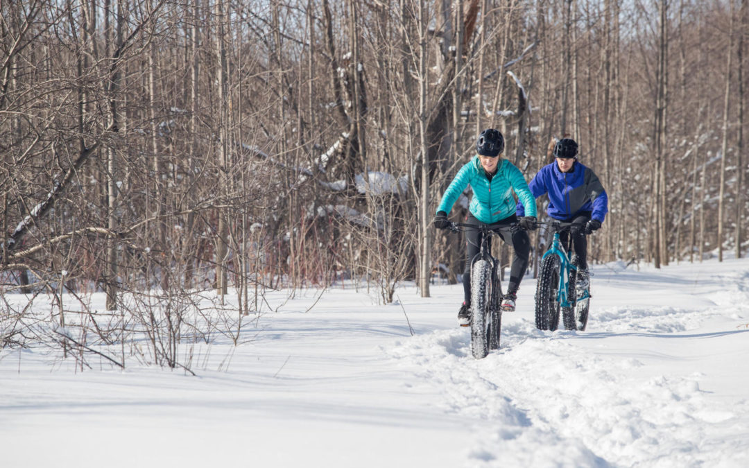 Fat Bike Trend: Overrated or For Real?