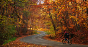 10 Reasons Why Cycling In Autumn Is Awesome